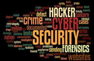 Cyber 13